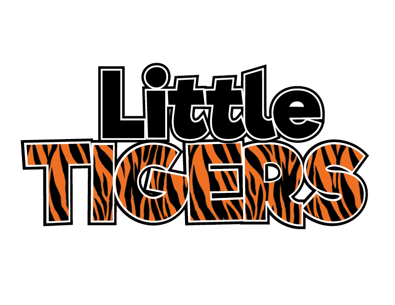 Little Tigers Pre-School Martial Arts Program